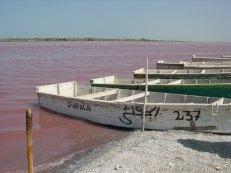 lac rose, tamtam 019